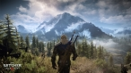 1402005463-the-witcher-3-wild-hunt-1