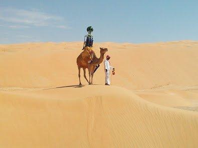 Camel.2e16d0ba.fill-395x296