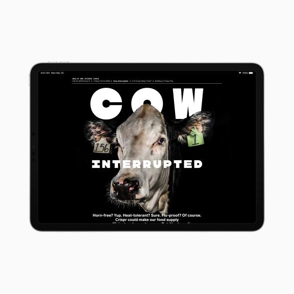 Apple-news-plus-wired-ipad-screen-03252019