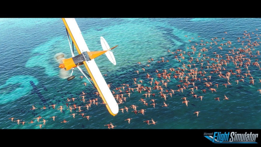 Microsoft Flight Simulator Flamingo Screenshot with logo